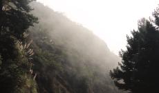 la brume - Big Sur