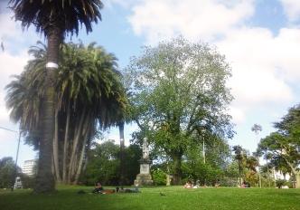 le parc Albert