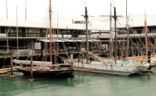 Marina de Auckland