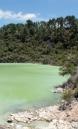 Lake Ngakoro - Wai-O-Tapu
