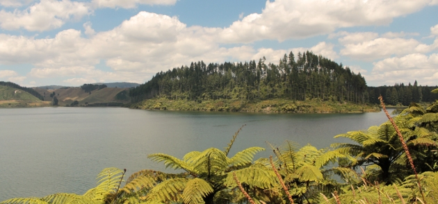 Lac Rotokakahi (Green Lake)