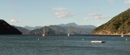 Bras de mer vue de Picton