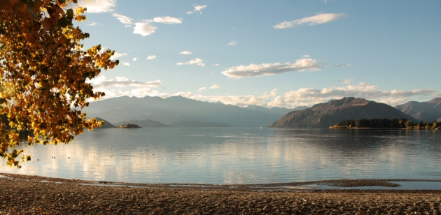 Ballade autour du lac Wanaka
