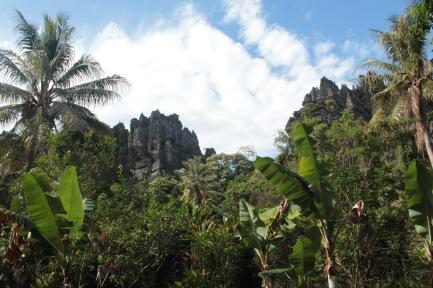 Les rochers linderaliques