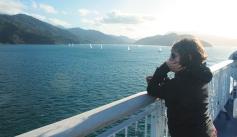 Ferry pour Wellington