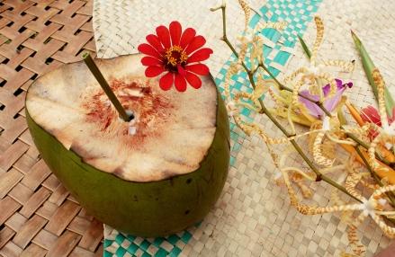 coco et bouquet de fleurs