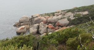 Tongue Point - Wilson Promontory