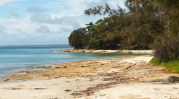 Blenheim beach - Jervis bay