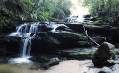 Cascade de Leura - Blue Mountains