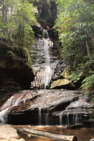 Empress falls - Blue Mountains