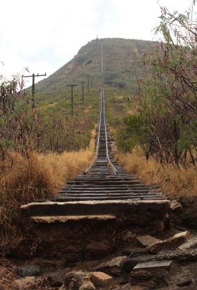 les escaliers de Koko head
