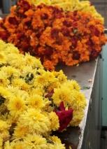 guirlandes de fleurs